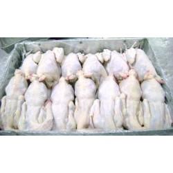 白条鸡,肉鸡,海鲜,冷冻食品