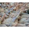 昆明冷冻白条鸡批发厂家-昆明简加工肉类批发